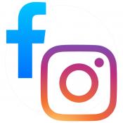 insta e fb icons webinando